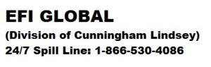 Cunningghamlindsey1 - img